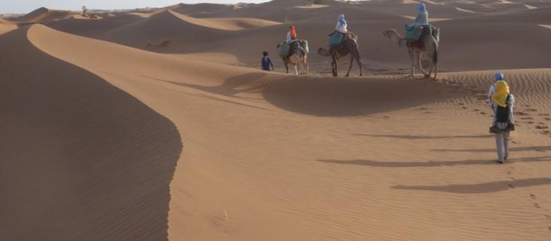 Seguiremos viajando al Desierto después del COVID-19. Así es la Vida...